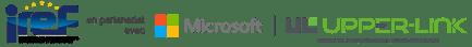 Logo MS - IREF - UL-2